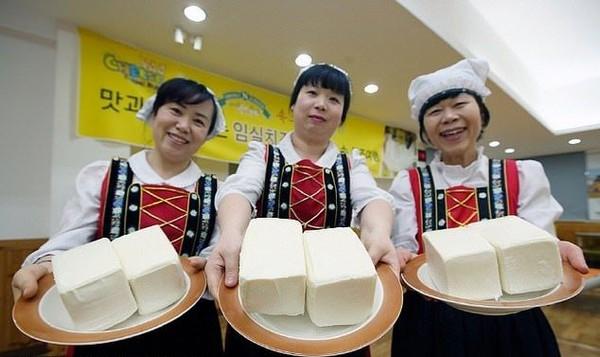 Kota Imsil dimana taman rekreasi serba keju ini berada memang terkenal akan kejunya. Imsil merupakan daerah penghasil keju pertama di Korea. Keju pertama kali dibuat di Imsil pada tahun 1950-an. (dok. Korea Tourism Organization)