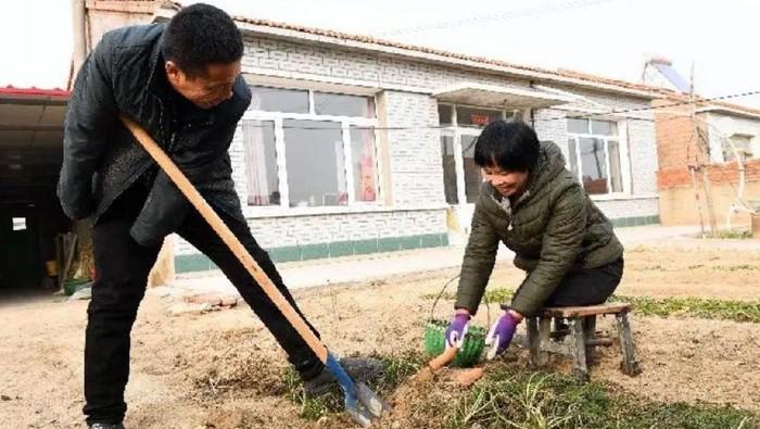 Pasangan difabel Liu Hai dan Li Meiwen. Foto: dok. SCMP