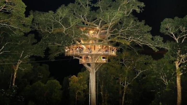 Rumah pohon Gibbon Experience di Laos (Dok. Gibbon Experience)