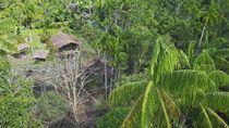 Orang-orang Papua yang Hidup di Atas Pohon