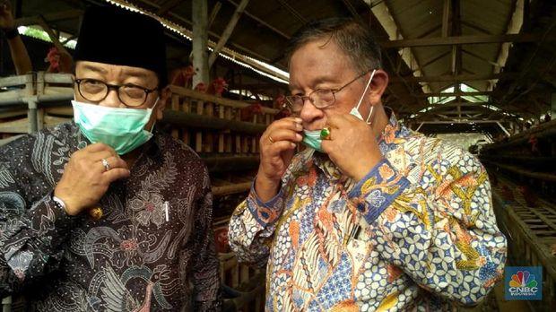 Karena Salah Hitung, RI Harus Impor Ratusan Ribu Ton Jagung