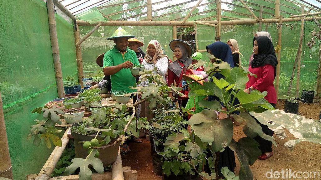 Menyatu dengan Alam di Wisata Kampung Gagot