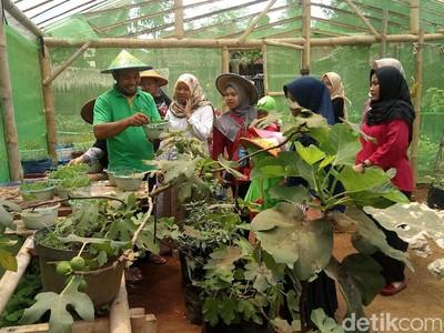 Liburan Akhir Tahun ke Kampung Wisata Gagot di Banjarnegara