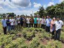 Semangatnya Petani Muda di Takalar Jadi Petani Hortikultura