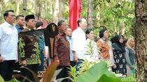 Jokowi Serahkan 91.998 Hektare SK Perhutanan Sosial di Jambi