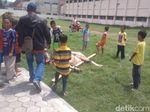 Ngamuk dan Seruduk Anak, Kerbau di Kudus Terpaksa Ditembak