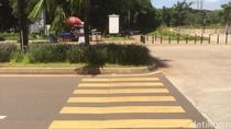 Keadaan Darurat Asian Games di Balik Zebra Cross Tabrak Tanaman