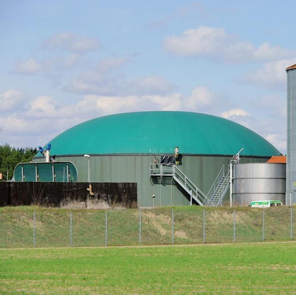 KLHK Bangun Fasilitas Pemanfaatan Limbah Biomassa di Bangka Belitung