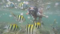 Kalau traveler mau snorkeling, Pantai Nglambor adalah tempatnya. Bahkan saat pandemi ini, ada peralatan snorkeling baru tang disediakan. (Pradito Rida Pertana/detikTravel)