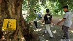 Horeee,... Kebun Raya Bogor Sudah Dibuka Lagi