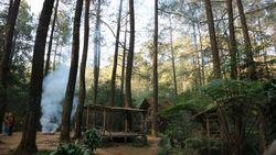 Rumah Pohon dan Rusa Tutul di Masigit Kareumbi, Bandung