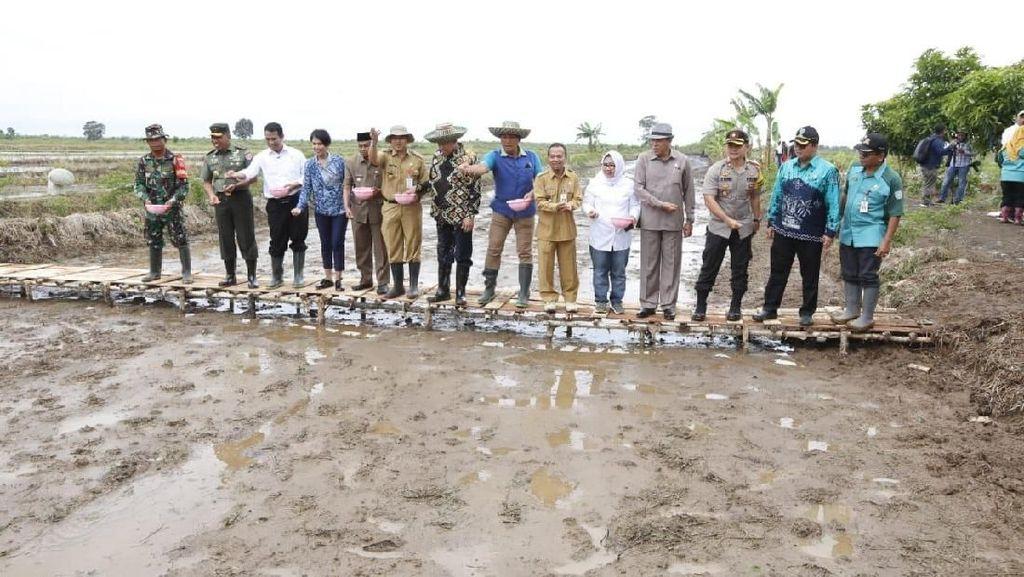 Kalsel Diproyeksikan Jadi Lumbung Pangan Luar Jawa