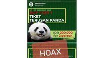 Taman Safari Bogor Kecam Hoax Promo Tiket Istana Panda!