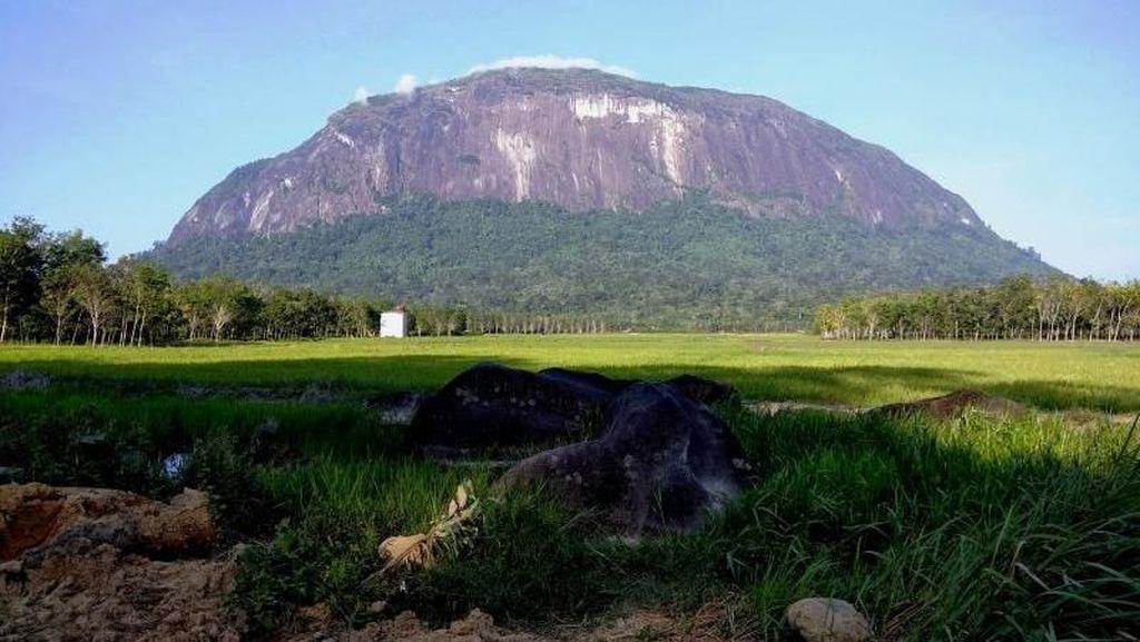 Bukit Kelam, Bukit Batu Raksasa Misterius di Kalimantan