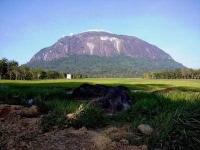 Bukit Kelam yang Misterius di Kalimantan
