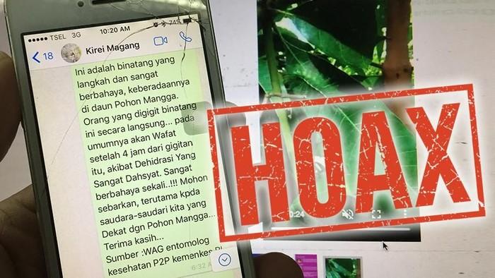 Hoax tentang waah ulet pada pohon mangga. Foto: detikHealth