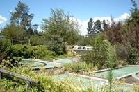 Jenis penginapannya pun beragam, ada caravan, hotel, dan kabin (Katikati Naturist Park)