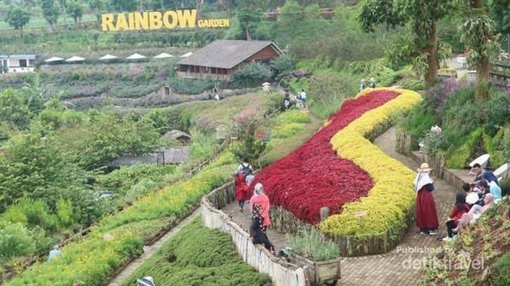Terpikat Rainbow Garden Lembang Bandung