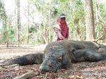 Rencana Penutupan TN Komodo Didukung KLHK, Ditentang Pengusaha