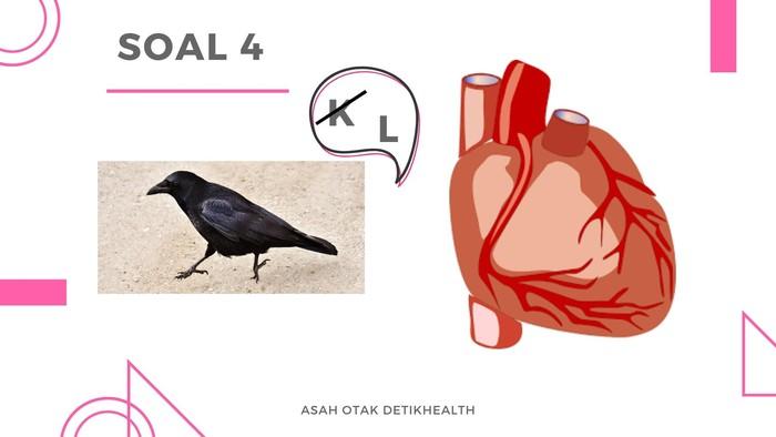 Petunjuk: Masalah pada satu organ tubuh yang bisa sebabkan kematian. (Foto: detikHealth)