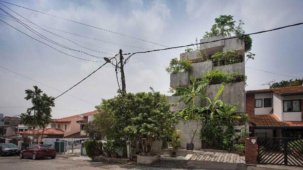 Rumah Ini Ditanami Tumbuhan yang Bisa Dimakan