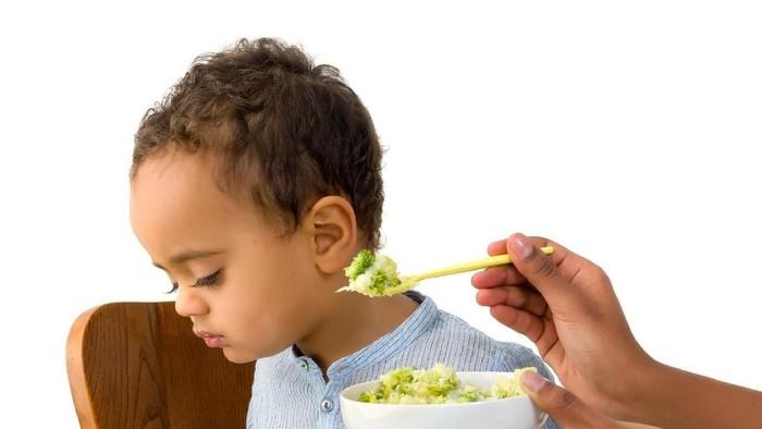 Ilustrasi bayi diet vegan. Foto: Dok. iStock