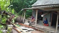 Hujan Disertai Angin Kencang, Pohon Bertumbangan di Demak