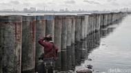Jokowi hingga Prabowo Pernah Bilang Jakarta akan Tenggelam