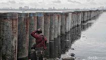 Pemprov DKI Jamin Robohnya Tanggul NCICD Tak Picu Banjir di Muara Baru