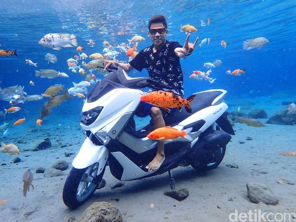 Sebagaimana dilihat dari website-nya, Daily Mail menyebut Umbul Ponggok sedemikian populer di Instagram. Kolam berukuran 70x40 meter di sana pun begitu jernih dengan ikan warna-warni berenang di dalamnya. (Bayu Ardi Isnanto/detikcom)