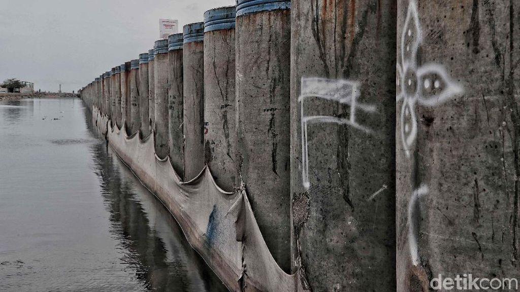 Ibu Kota Pindah ke Kaltim Bisa Bantu Jakarta Batal Tenggelam?