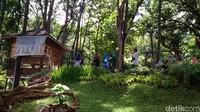 Ada juga rumah pohon yang bisa dipakai untuk menikmati keindahan taman anggrek dari ketinggian, dan beberapa saung untuk makan-makan (Dadang Hermansyah/detikTravel)