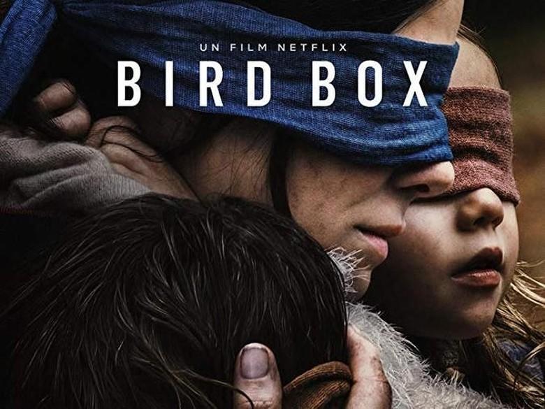 Siap-siap Deg-degan! Bakal Ada Novel Sekuel Bird Box Foto: (imdb.)