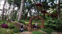 Pengunjung bisa menikmati keindahan taman, berfoto, juga wisata edukasi tentang jenis anggrek (Dadang Hermansyah/detikTravel)