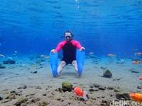 Di sinitraveler bisa tak cuma bisa menikmati wisataair dengan berenang atau snorkeling. Foto-foto dalam air pun jadi salah satu hal bisa dilakukan. Hal inilahyang ngehits banget, apalagi hasilnya memang sangat instagramable.(Foto: Bayu Ardi Isnanto/detikcom)