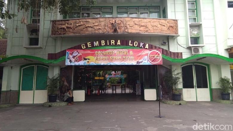 Wisata di Gembira Loka Zoo, Cocok untuk Liburan 17 Agustus/Foto: Usman Hadi/detikcom