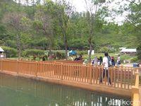 Para pengunjung di Danau (Datok Haris/detikTravel)