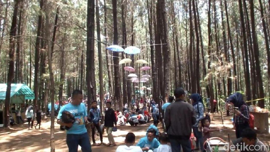 Foto: 2 Tempat Hits di Garut untuk Liburan Tahun Baru