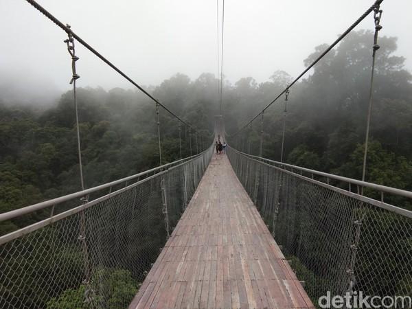 Ini Jembatan Gantung Situ Gunung yang viral di kalangan traveler. Jembatan ini jadi spot baru yang wajib dikunjungi traveler mumpung liburan akhir tahun. (Idris/detikTravel)