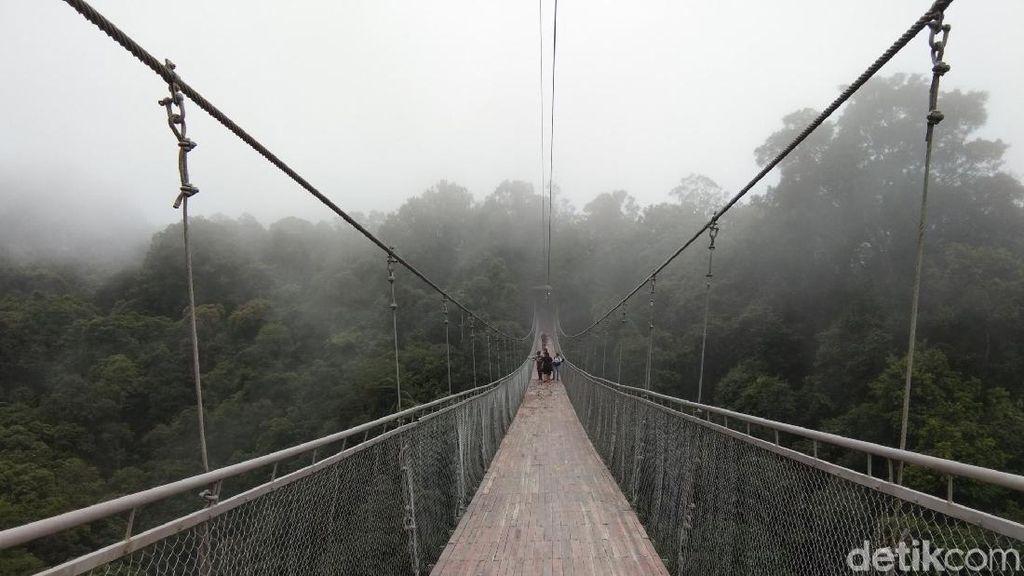 Viral! Jembatan Gantung Situ Gunung Diserbu Wisatawan