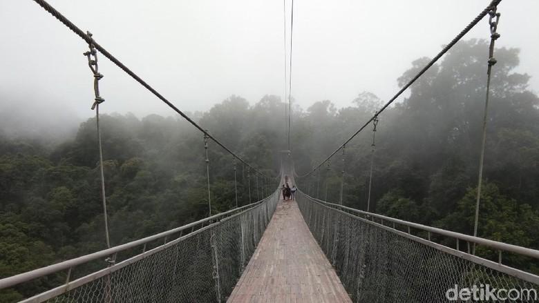 Jembatan Gantung Situ Gunung yang viral di media sosial (Idris/detikTravel)