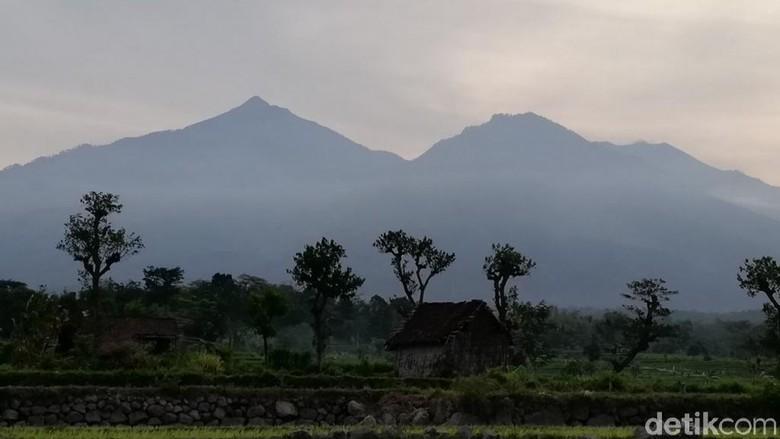 Gunung Arjuno (Muhajir Arifin/detikTravel)