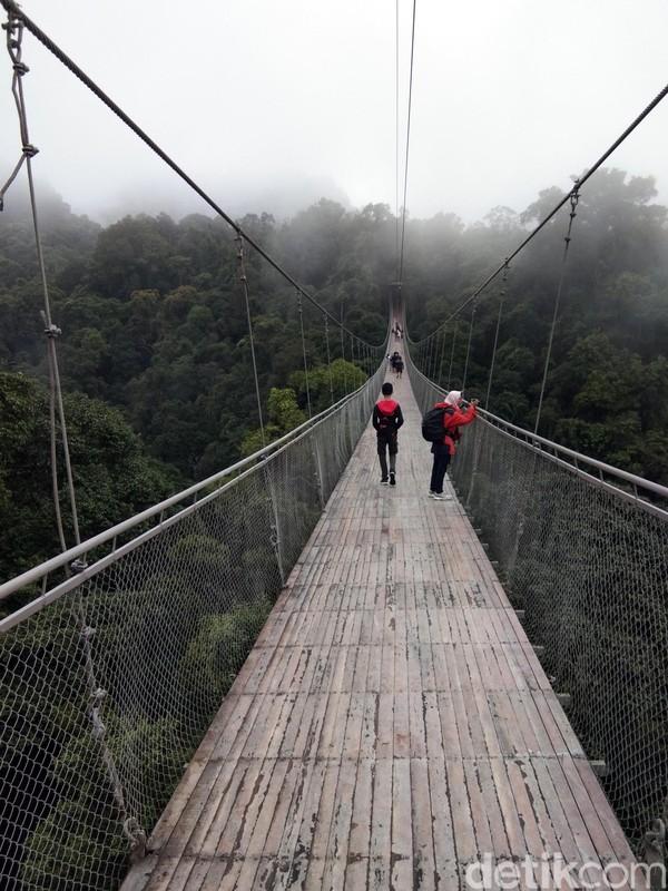 Jembatan gantung ini disebut-sebut sebagai yang terpanjang di Indonesia. Pantas jika jembatan ini jadi viral di media sosial. (Idris/detikTravel)
