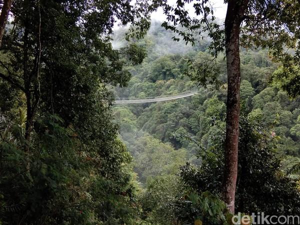 Dari kejauhan, jembatan ini tampak begitu menantang. Wajar karena jembatan ini memiliki panjang 240 meter dan berada di ketinggian 150 meter dari permukaan tanah. (Idris/detikTravel)