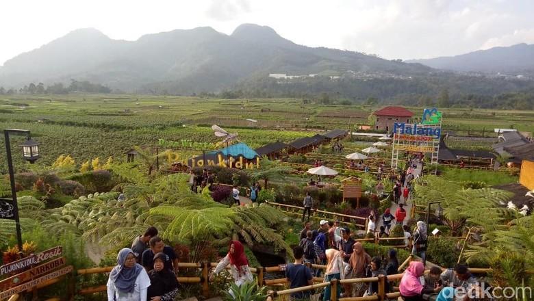 Jelang Tahun Baru Cafe Sawah Pujon Kidul Dipadati Pengunjung