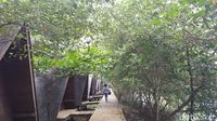 Tahun Baru di Jakarta? ke Taman Mangrove Saja