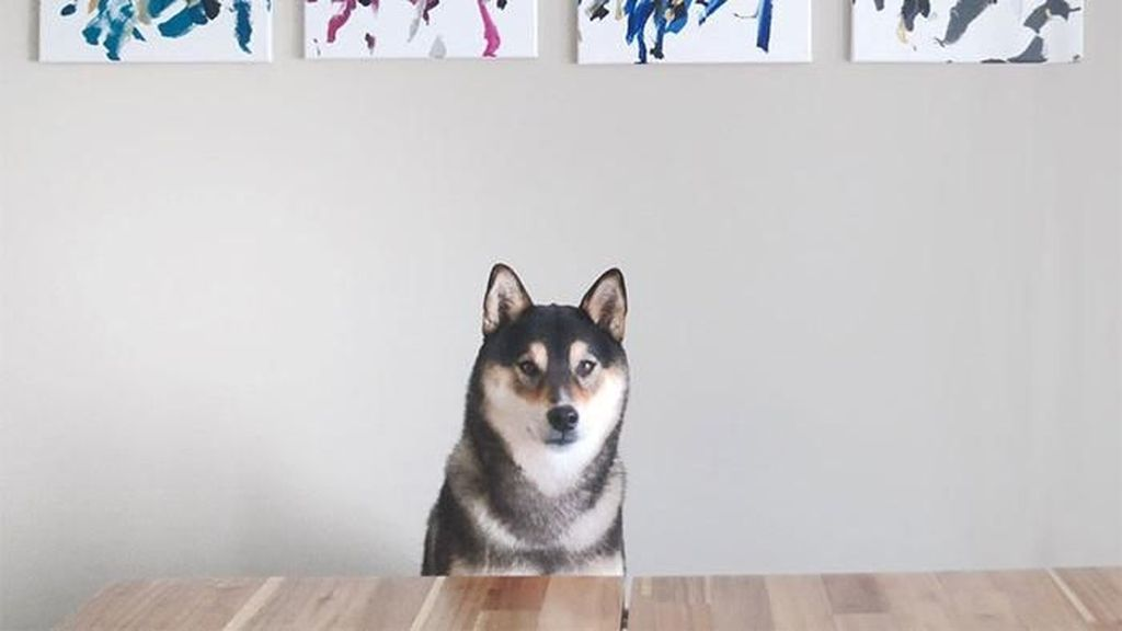 Gemas! Anjing Jago Lukis yang Karyanya Laku Dijual Rp 548 Ribu