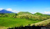Liburan Awal Tahun 2019, Ada Bukit Teletubbies di Bondowoso