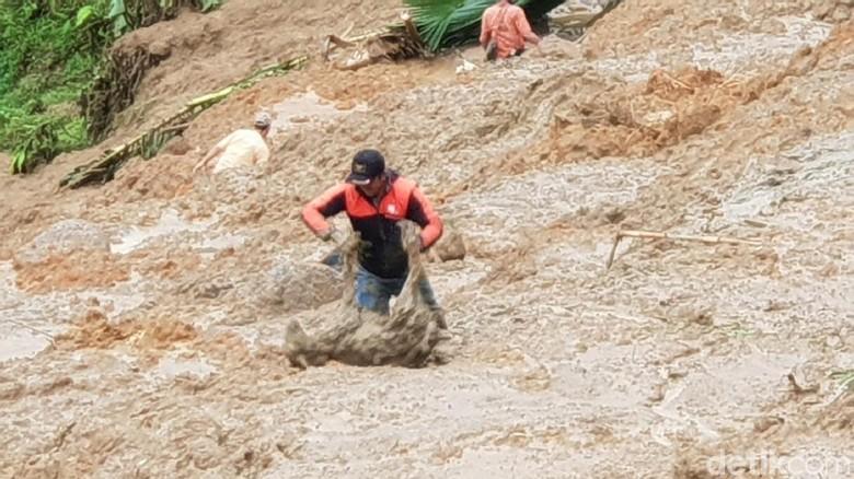 Mengembik di Timbunan Longsor, Kambing Ini Diselamatkan Warga