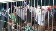 Penampakan Penghuni Rutan di Riau Tidur Bak Kelelawar